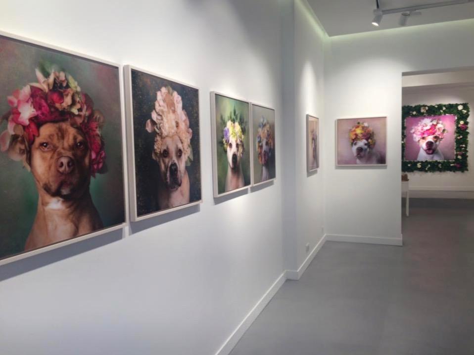 béton ciré taloché galerie d'art Décaum Paris